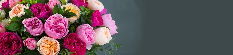 David Austin Bouquets