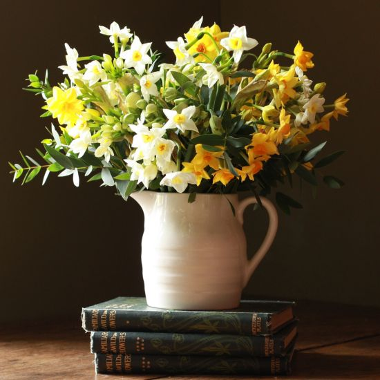 English Narcissi Jug