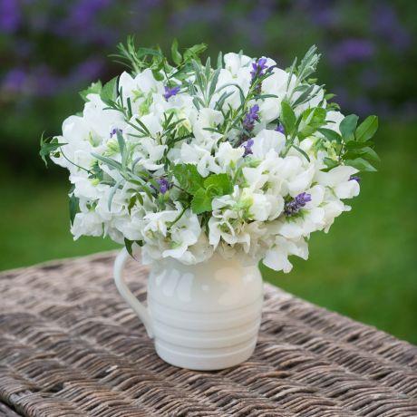 Ivory Sweet Pea & Lavender