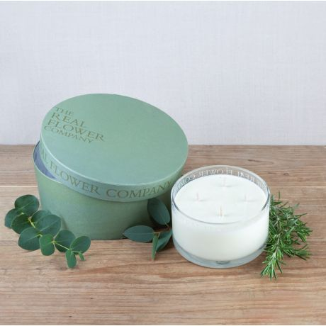 Rosemary & Eucalyptus Scented 4 Wick Candle