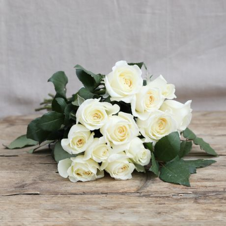 cream ivory diy roses