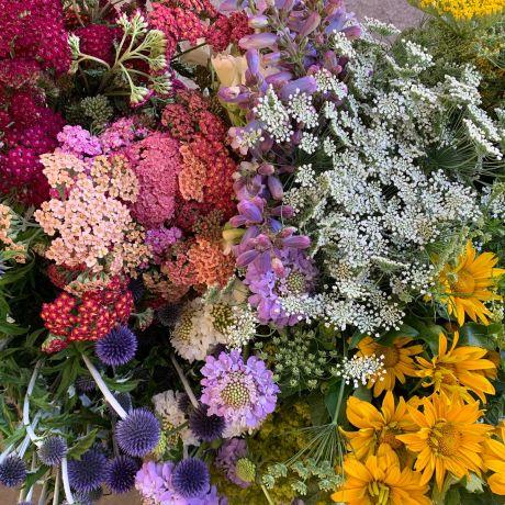Seasonal British Flower and Filler Box