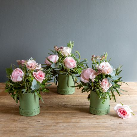pastel pink pick of the day hat box trio - shot june 2021