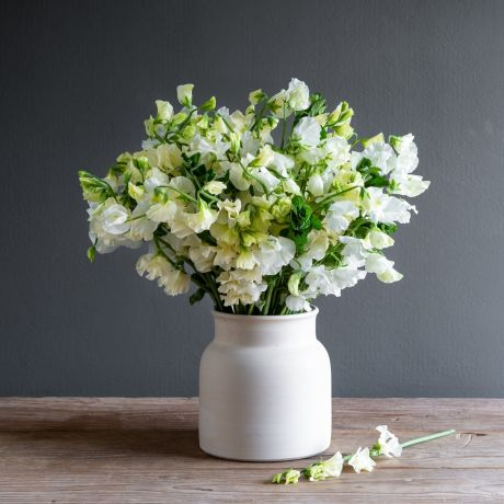 Cream and Ivory Simply Sweet Pea Bouquet
