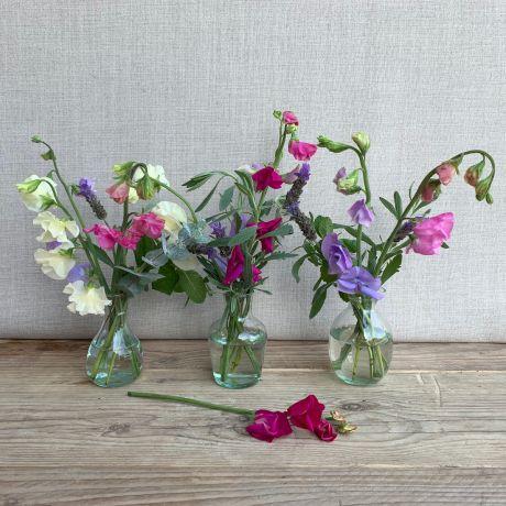Sweetpea Vase Trio