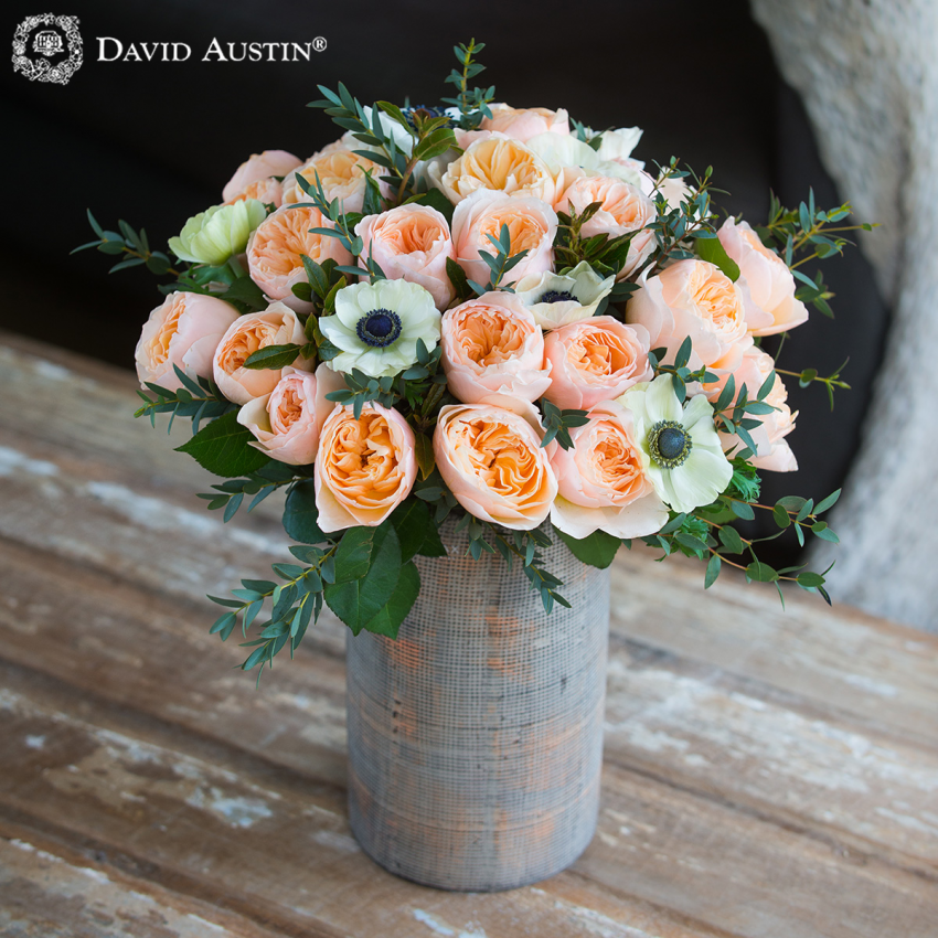 David Austin's Juliet Bouquet