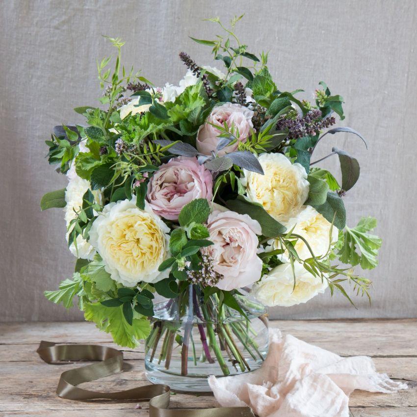 David Austin Patience and Kiera Bouquet