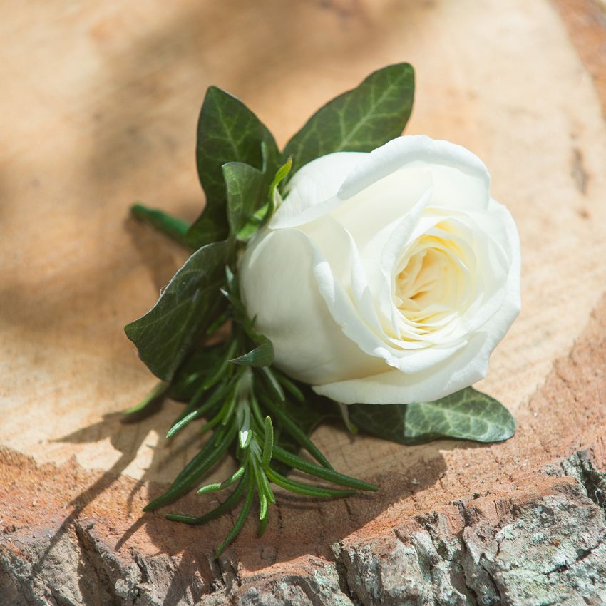 Ivory Buttonhole