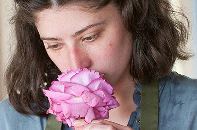 The demise of scented roses