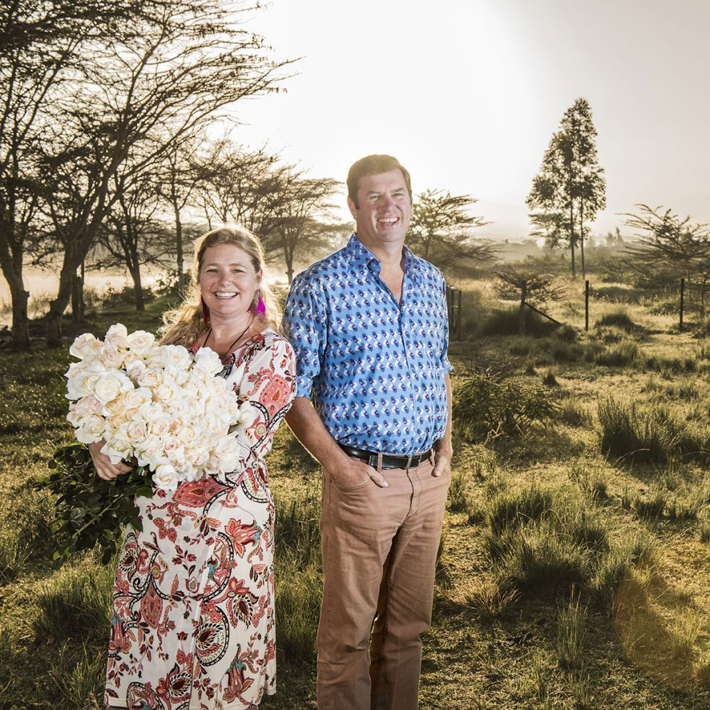 Kenyan rose: features, variety description, benefits 71