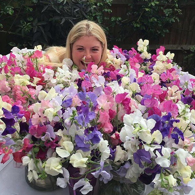 Ten sweet-smelling facts about Sweet Peas | The Real Flower Company blog