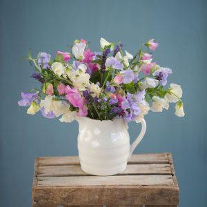 chelsea-sweet pea and herb jug