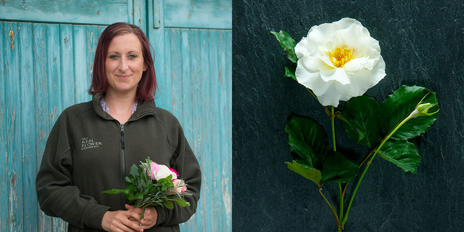 Verity for British Flower Week with her favourite English rose Margaret Merril