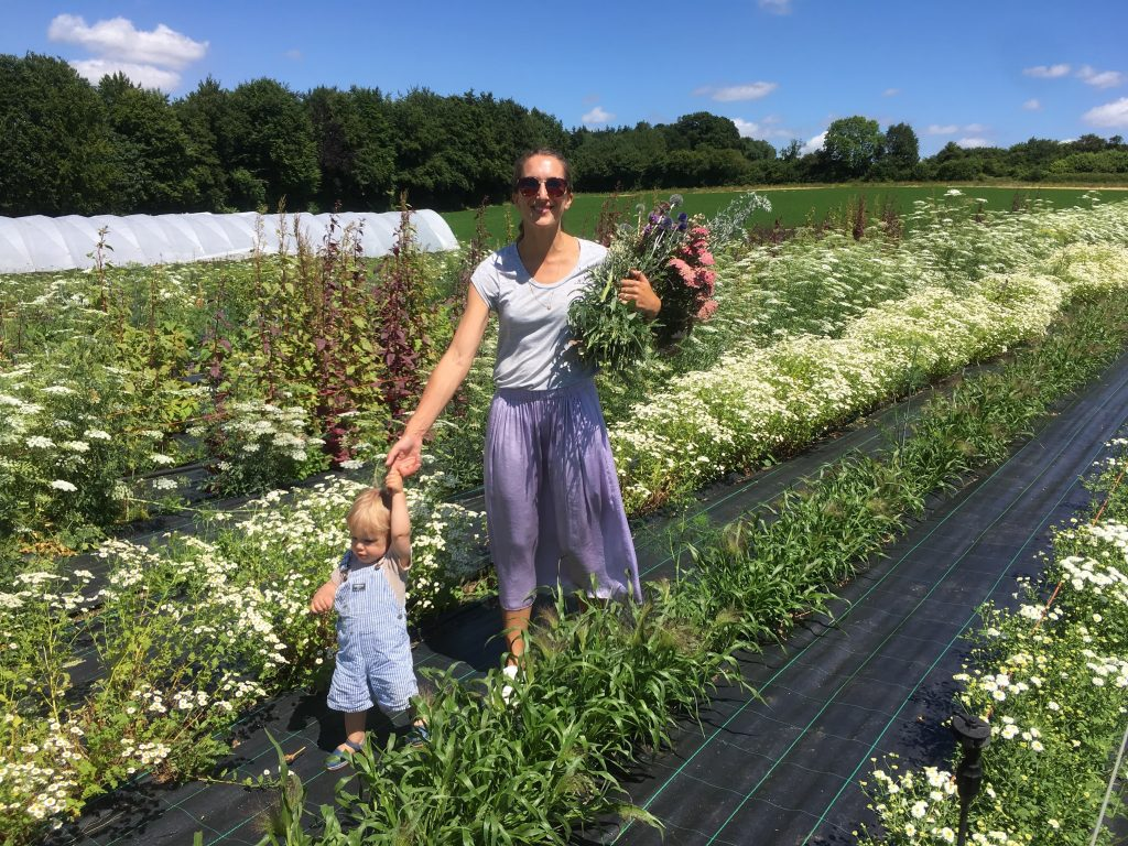 how to dry flowers at the farm-min