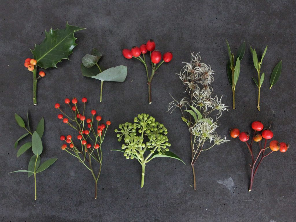 autumn winter foraging guide header