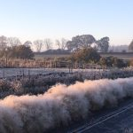 Winter on our English Flower Farm