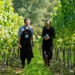 Meet award-winning English sparking wine grape-grower Augusta Raimes