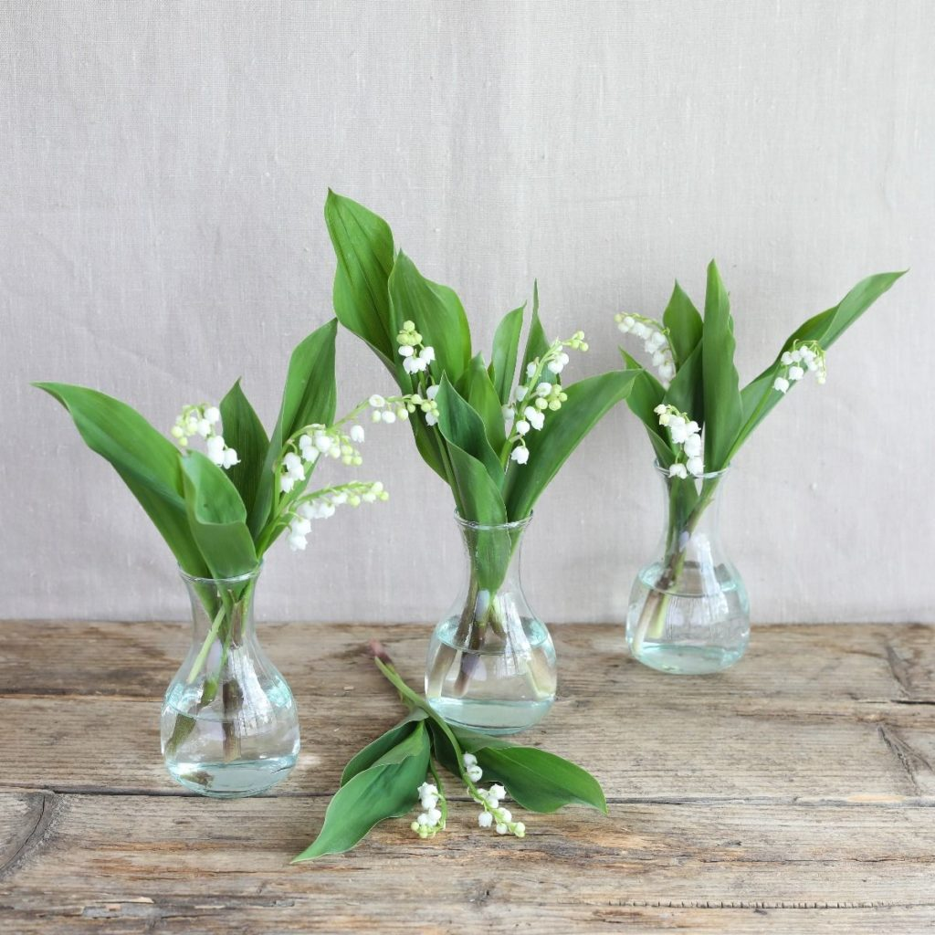 Lily Of The Vally in Vase Trio