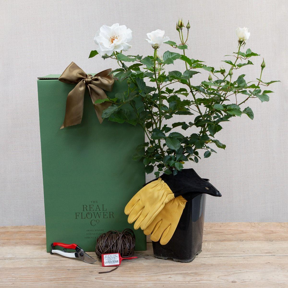 gardeners delight giftbox