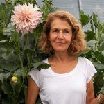 How to Plant Dahlias