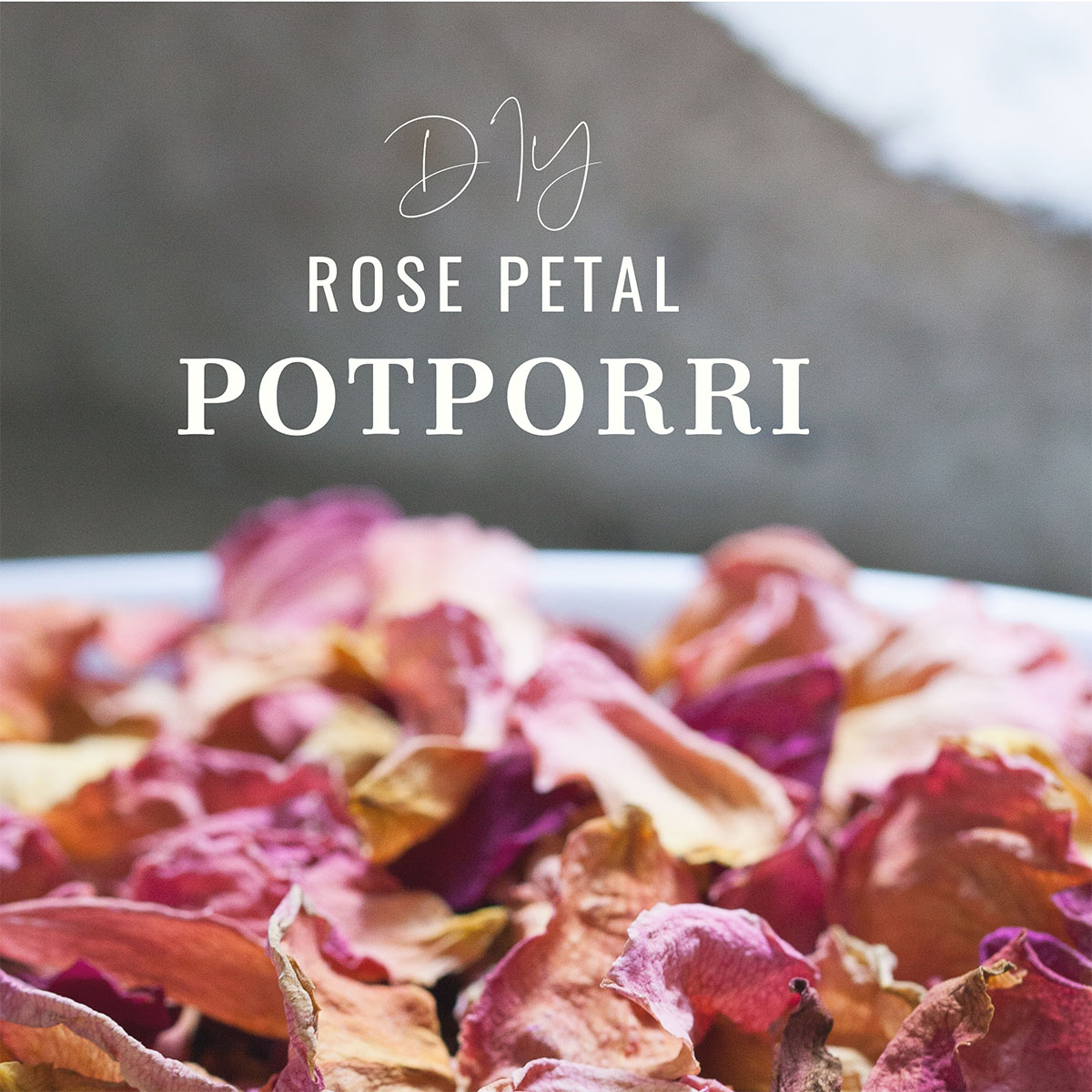 How to Make Potpourri with Rose Petals