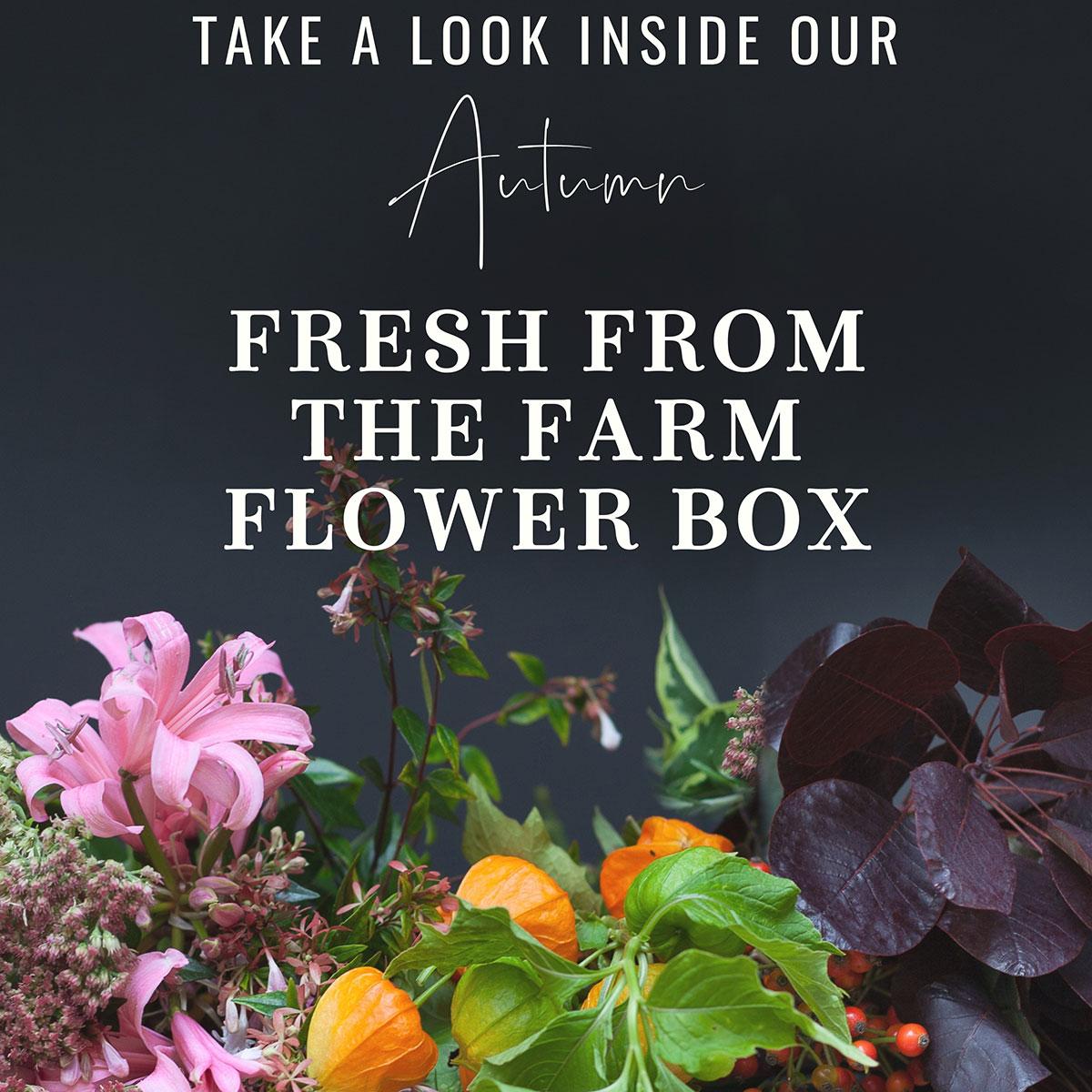 Take a Look Inside Our Autumn Farm Flower Box